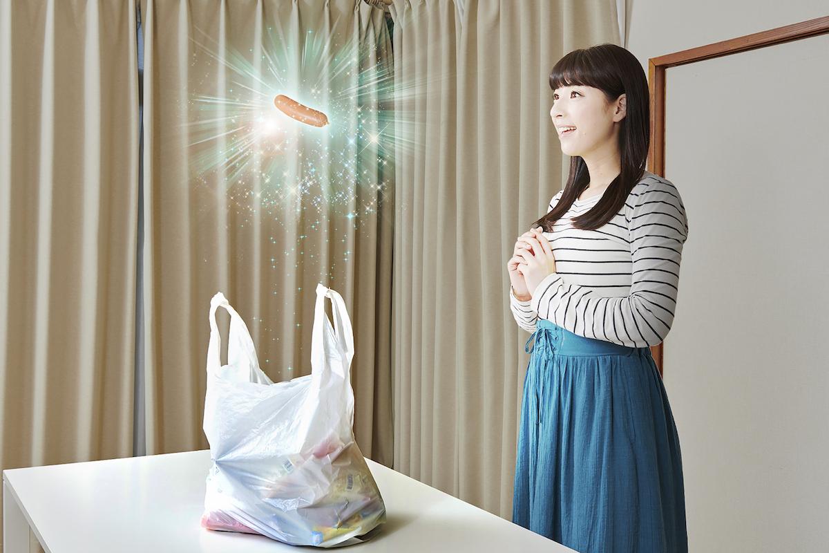 スーパーで買ってきたソーセージが突如輝いて空中に浮かびはじめ、「妖精界を救って!一緒に来て!」と助けを求めてきて…?!