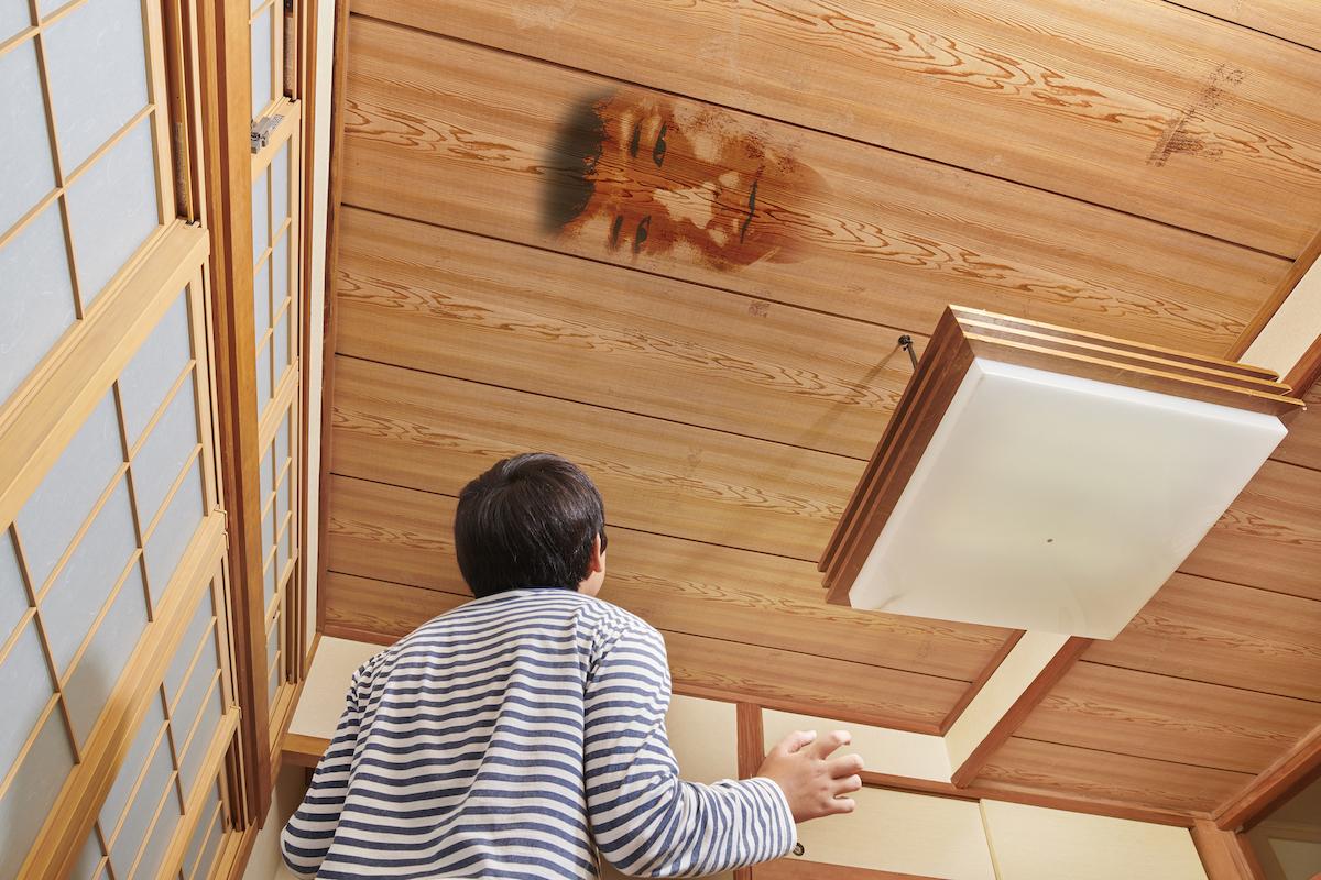 天井の木目があまりにも「顔」すぎて驚く息子
